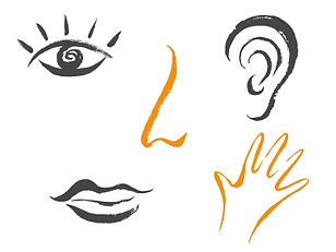 Les sensations corporelles redécouvertes grâce à la Relaxation dynamique Martenot à Suresnes