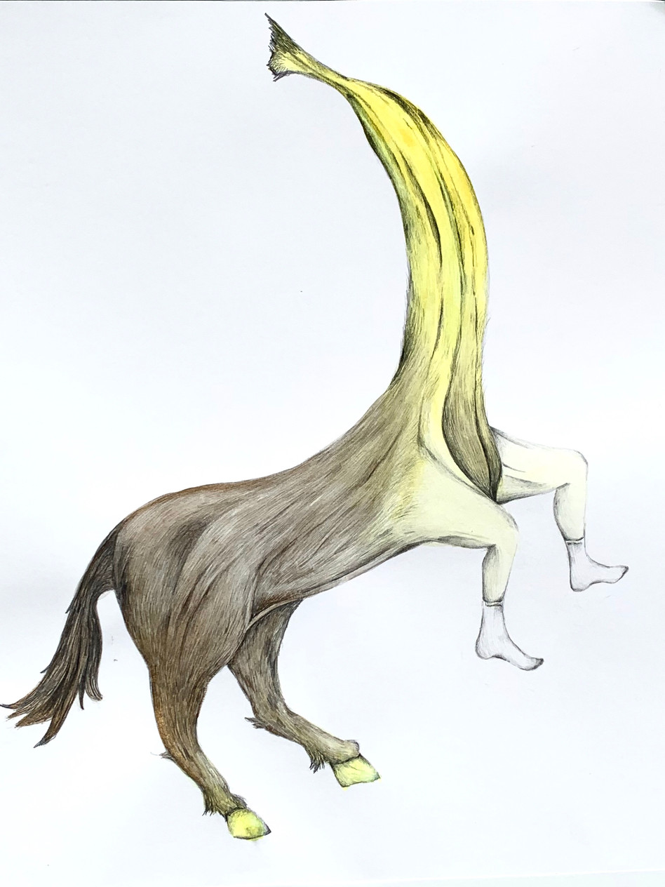 Centauromacy with Banana Torso