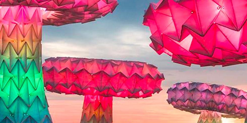 No Spectators: The Art of Burning Man