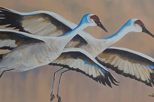 Cue the Cranes