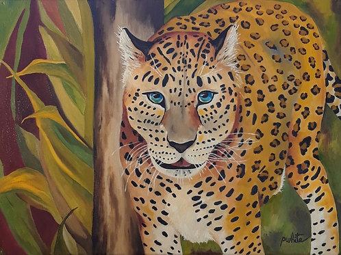 Endangered Leopard