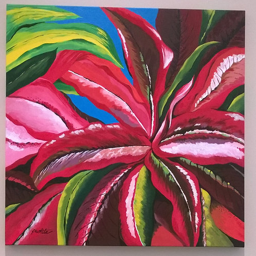 Red Bromeliad Leaves