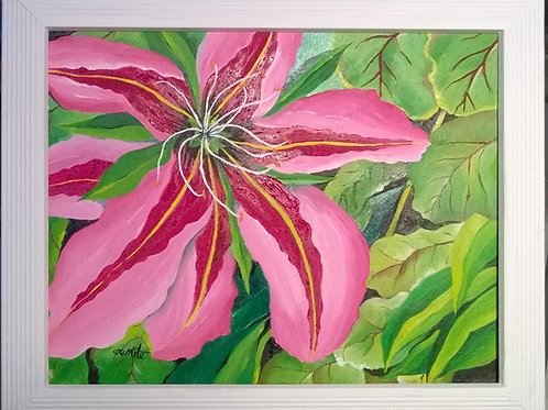 Hawaii Pink Potion