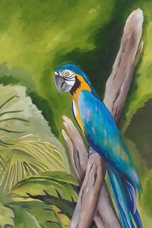 Parrot on a Perch - SOLD