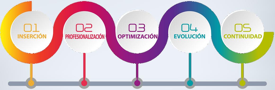 Startup, Estabilizacion, Crecimiento, Madurez, Sustentabiidad.