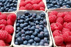 berries-blueberries-raspberries-fruit-122442
