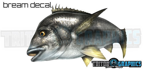 Bream Decal