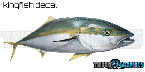 Kingfish Decal