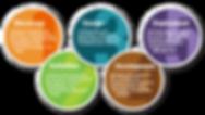 website-design-process (1).png