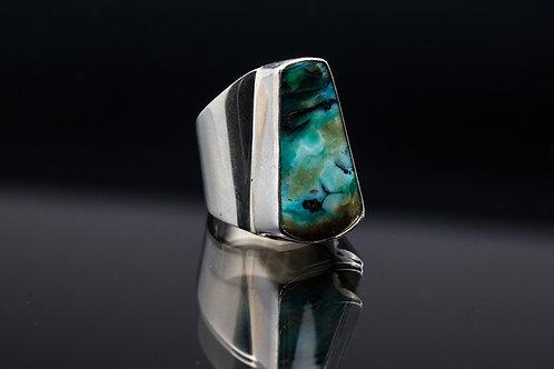Petrified Opal-wood Ring