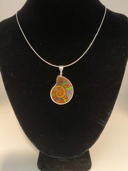 Small Ammolite ammonite Necklace