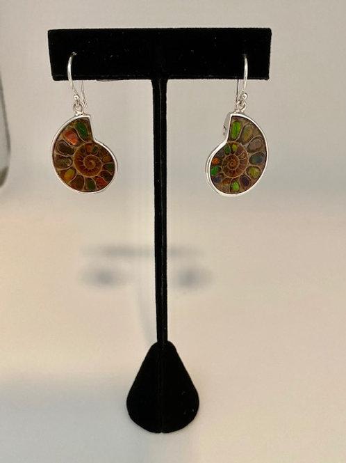 Ammolite ammonite earrings