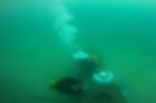 Vérification des cuves immergées