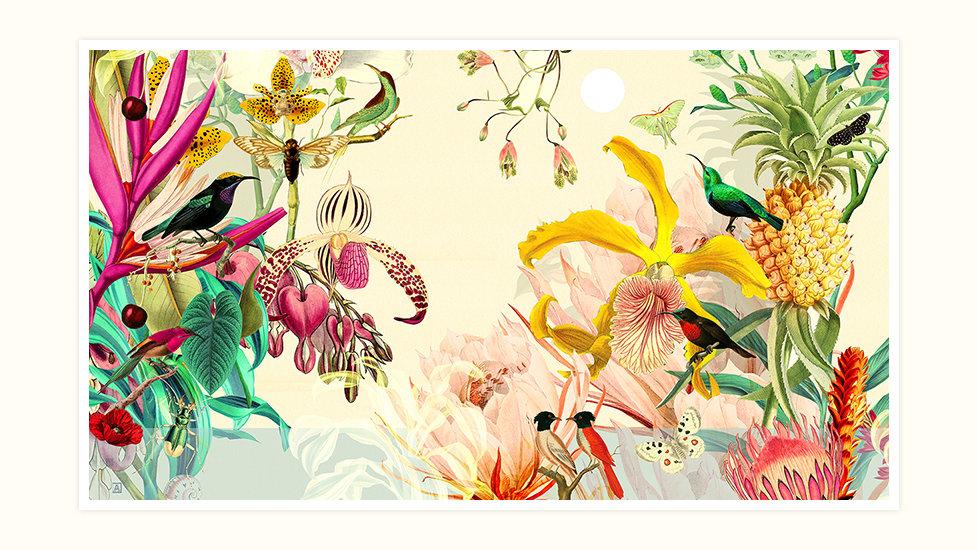 Sweet Botanical Composition