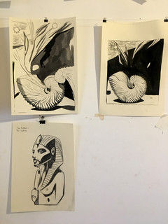 The Nautilus-Raw Materials [in process]