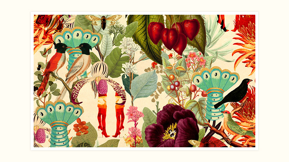Biodiversity Wallpaper