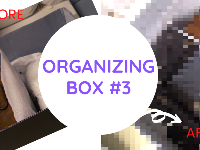 How to Store Artifacts - Box #3 - Museum Behind the Scenes