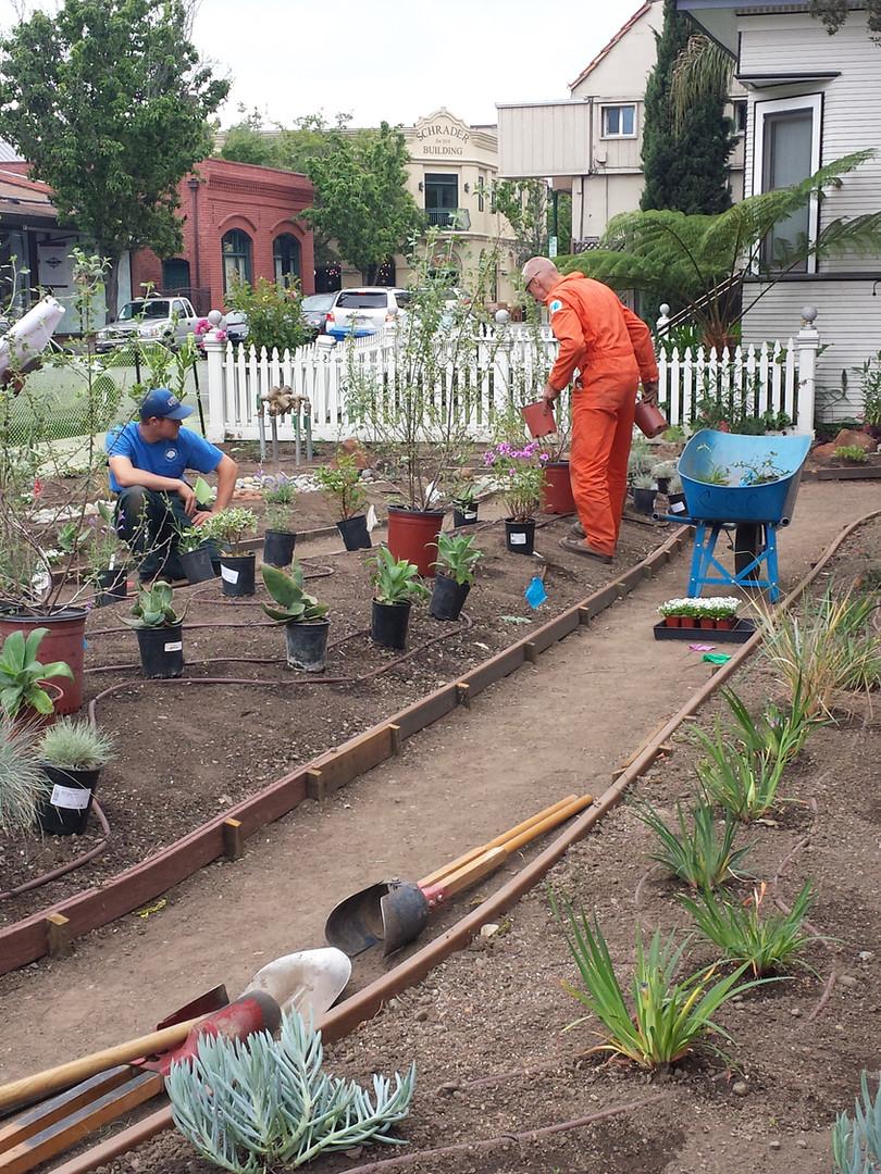 planting april 27 2016.jpg