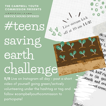 Environment Instagram Challenge Ad.png