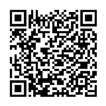 qr code We Rise Program.jpg