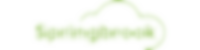 CDI SpringBrook Logo