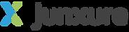 CDI_Junxure_logo_import.png