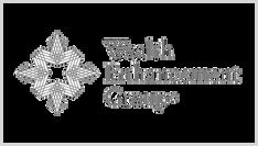 Wealth Enhancement Group Logo