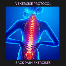 3 Exercise Protocols: Back Pain Recovery
