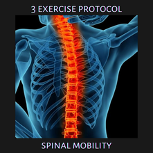 3 Exercise Protocol: Spinal Mobility