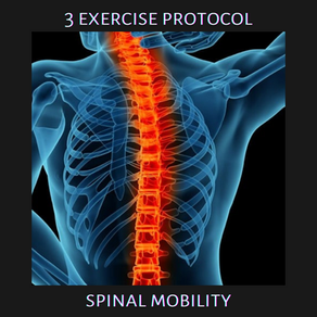 Exercise Protocols: Spinal Mobility