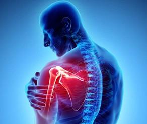 Exercise Protocols: Shoulder Pain