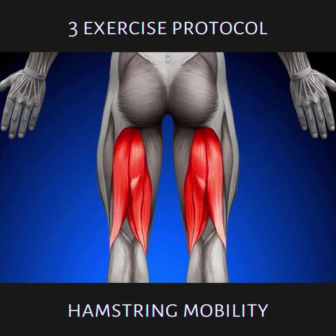 Exercise Protocols: Hamstring Mobility