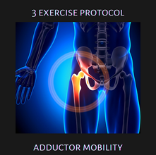 3 Exercise Protocol: Adductor Mobility