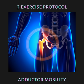 Exercise Protocols: Adductor Mobility