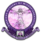 american_academy_micro-logo.png