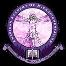 american_academy_micro-logo.png