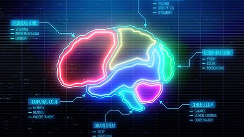 brain benefits.png