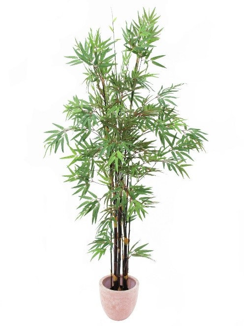 Kunstpflanzen ab