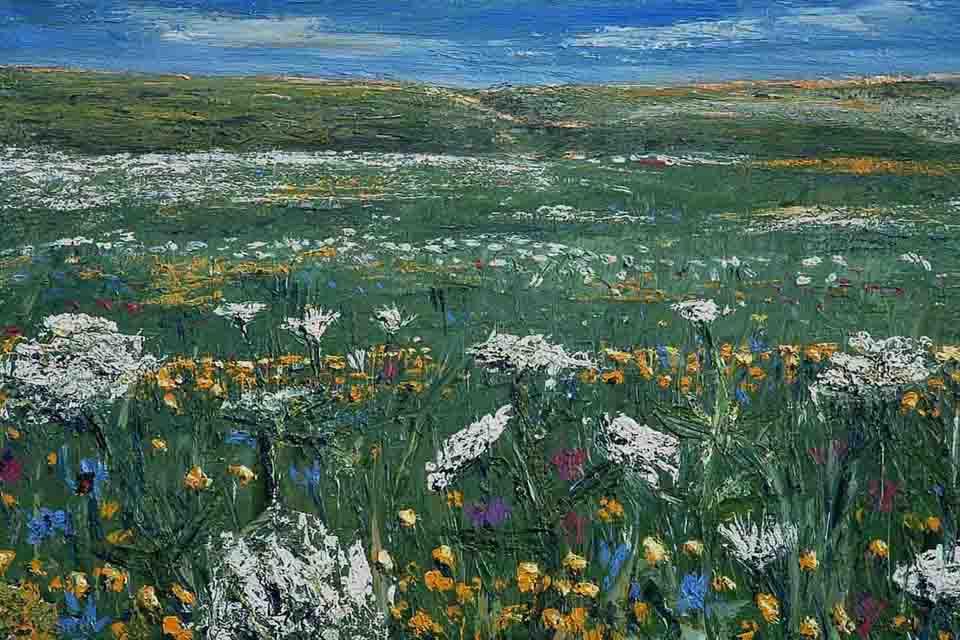 Romanian wildflowers with sky, David Starley art, original art in oils, MASA-UK Art Gallery, Bury