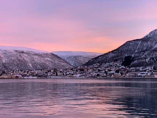 Things to do in Tromsø during Winter