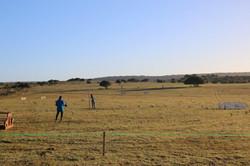 Jongensfontein course