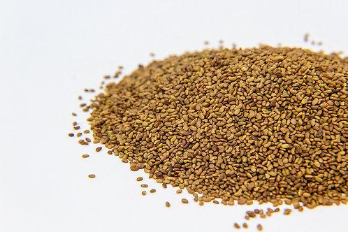 Alfafa Seeds 1g