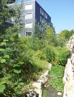WÜB Mitteldorf