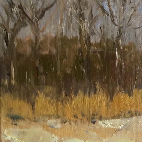 Winter Woods - $95