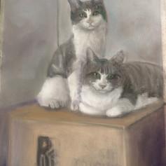 Barn Cats - $325