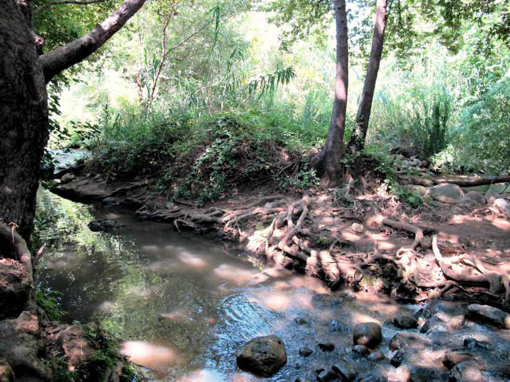 Nahal Snir - Hasbani River
