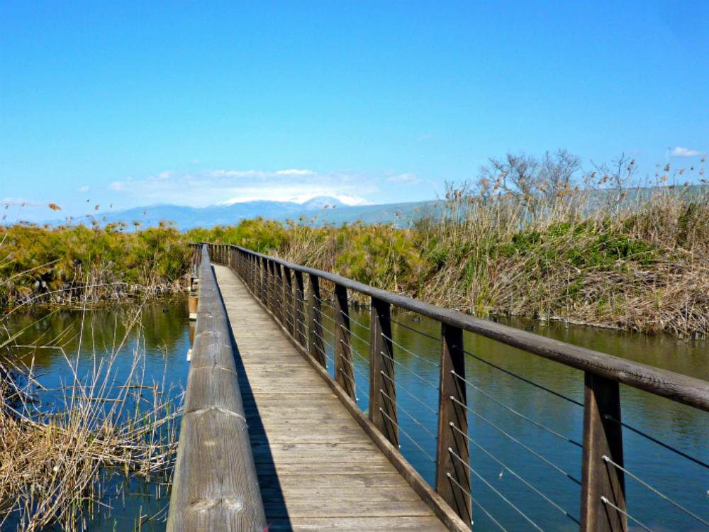 Hula Nature Reserve