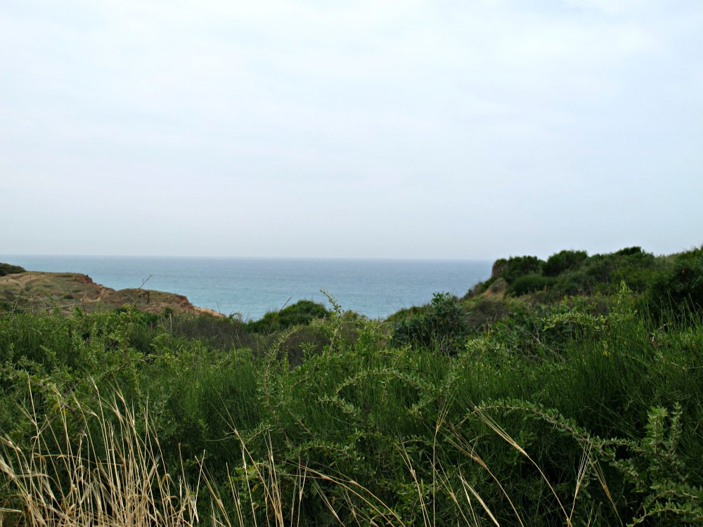 View from Sharon Beach National Park