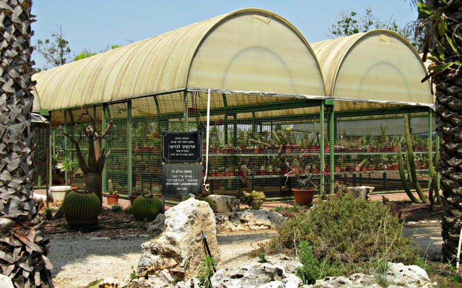 Cactus Garden (in Park HaYarkon)