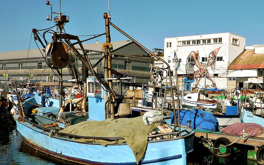 Jaffa Port